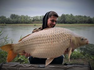 Bojlis-horgászat