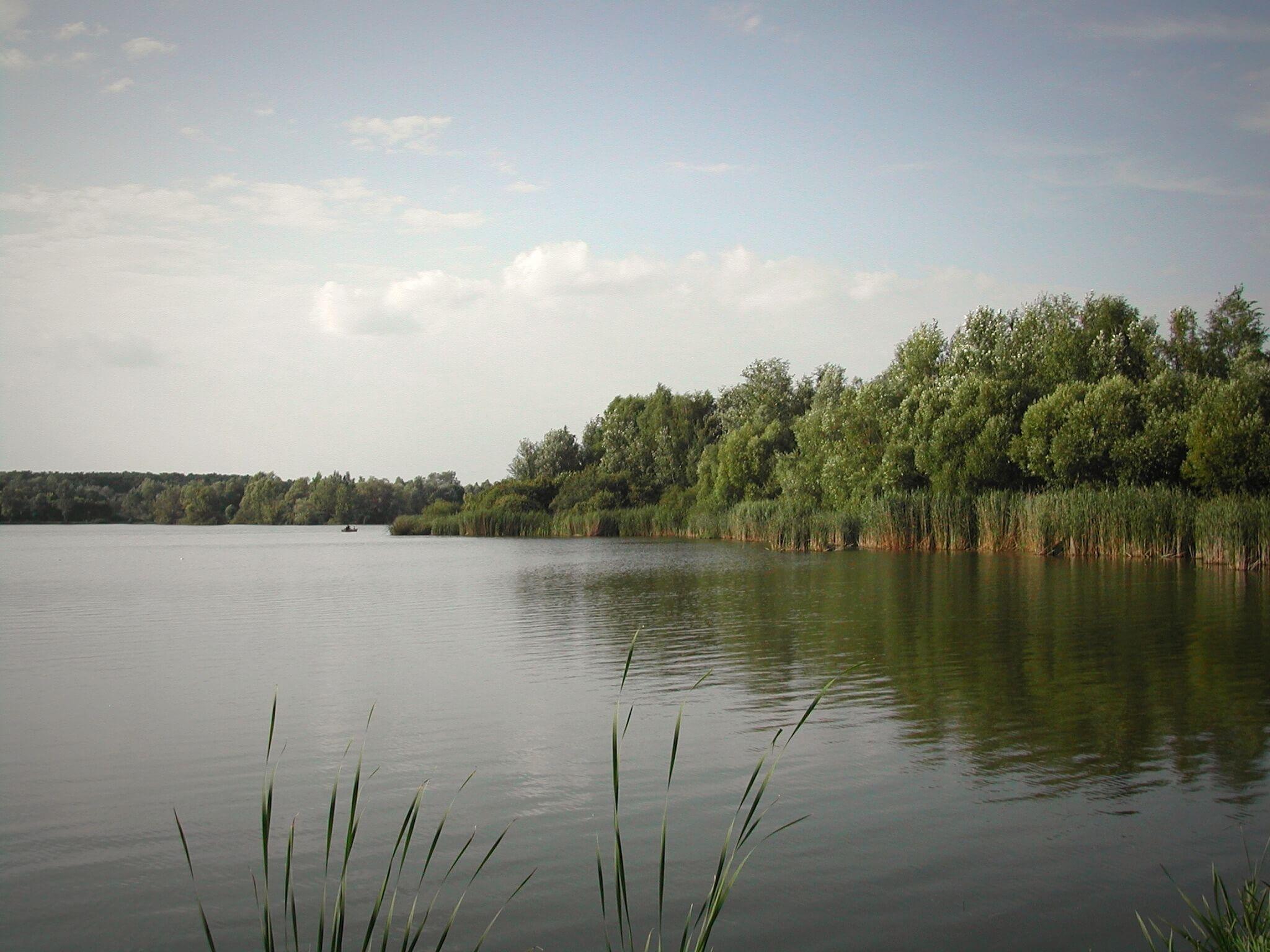 Imre-Bojlis-Horgászat-Teremi-tó