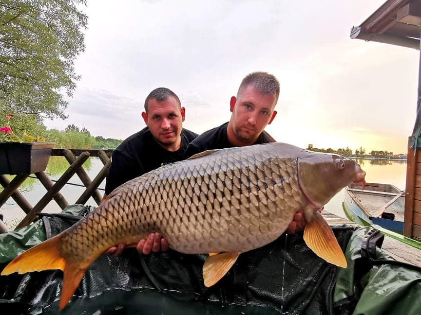 mr-bojli-horgászverseny